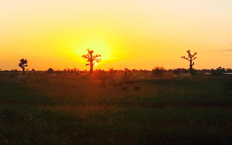 Atardeceres en Senegal