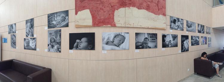 Rafael Dávila. Exposición neonatos