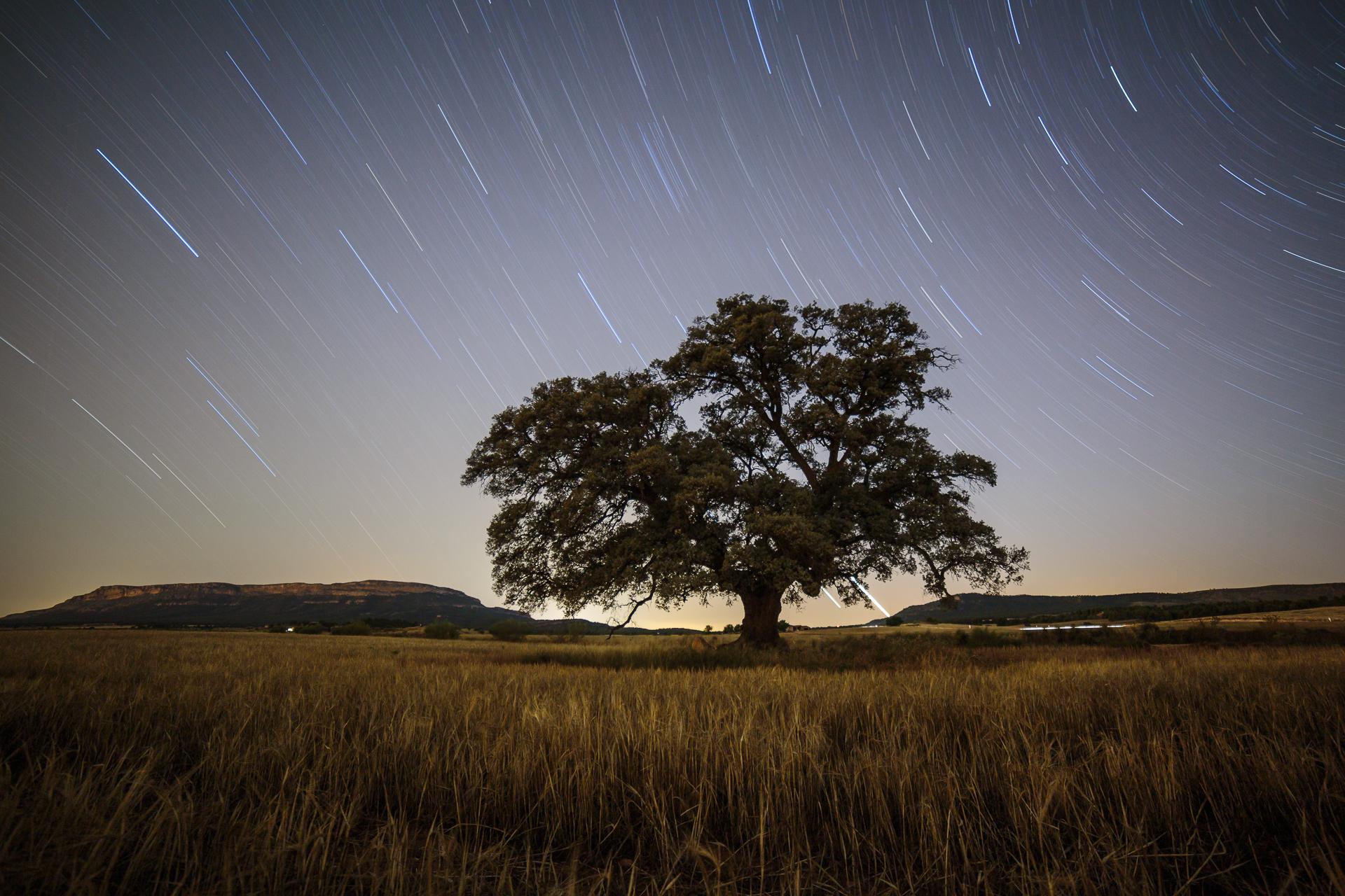 Fotografía nocturna. ¿Qué necesitas saber?