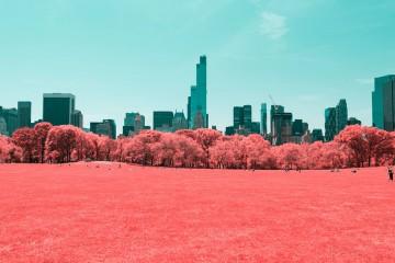 Central Park. Paolo Pettigiani