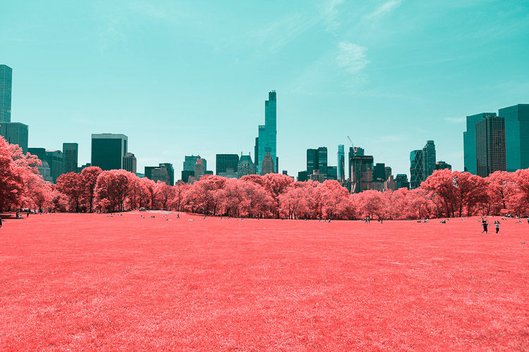 Paolo Pettigiani Central Park