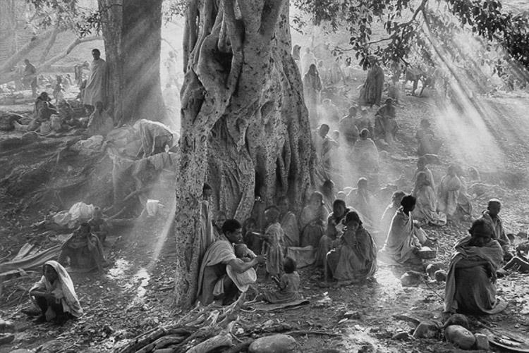Fotografía documental siglo XX. Sebastiao Salgado