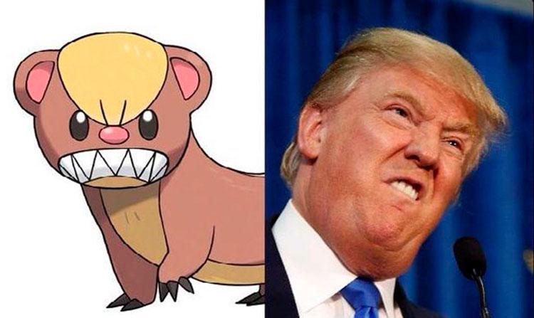 Pokémon Yungoos - Donald Trump