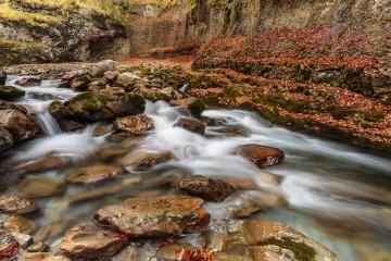 rio en otoño