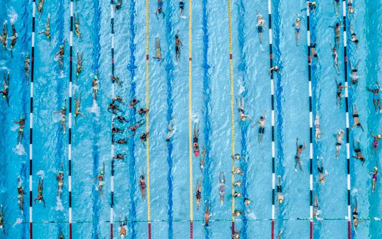 Piscina olímpica con nadadores