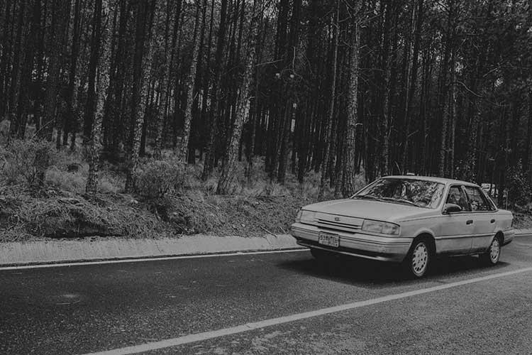 Coche por carretera en el bosque