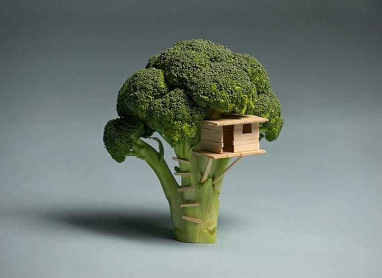 Brock Davis casa del árbol