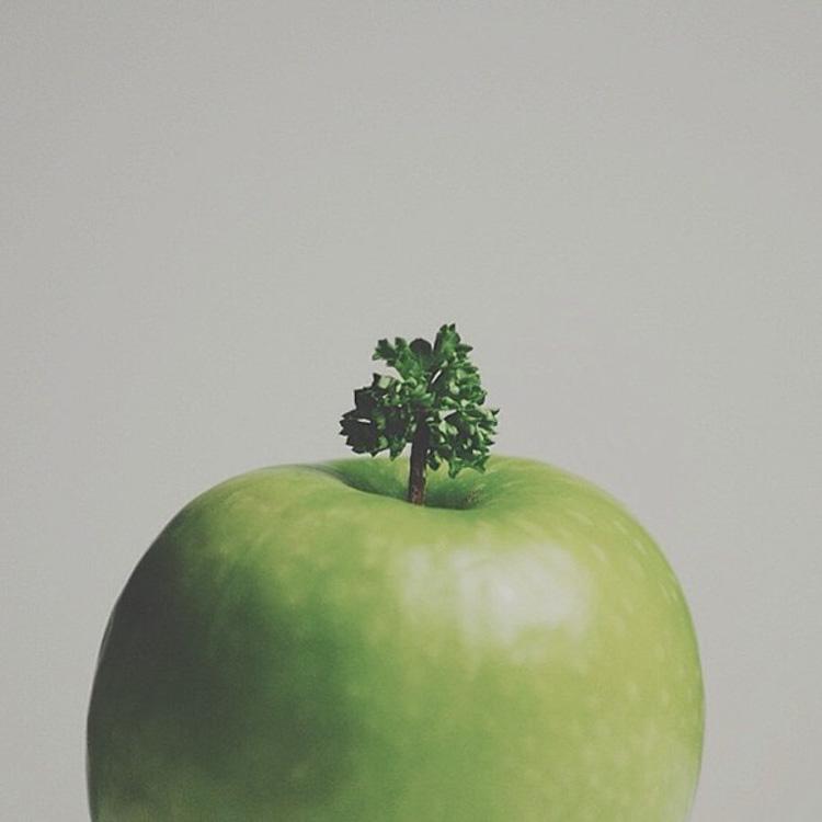 Brock Davis árbol manzana