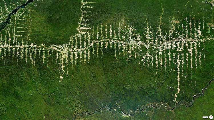 Deforestación de la Selva del Amazonas a su paso por Brasil