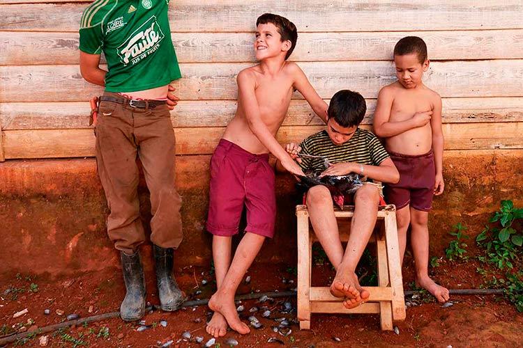 Niños cubanos con un gallo