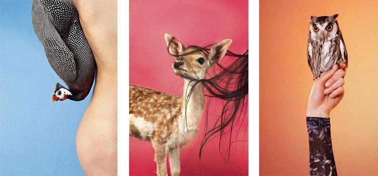 "Ryan McGinley ""Animals"""