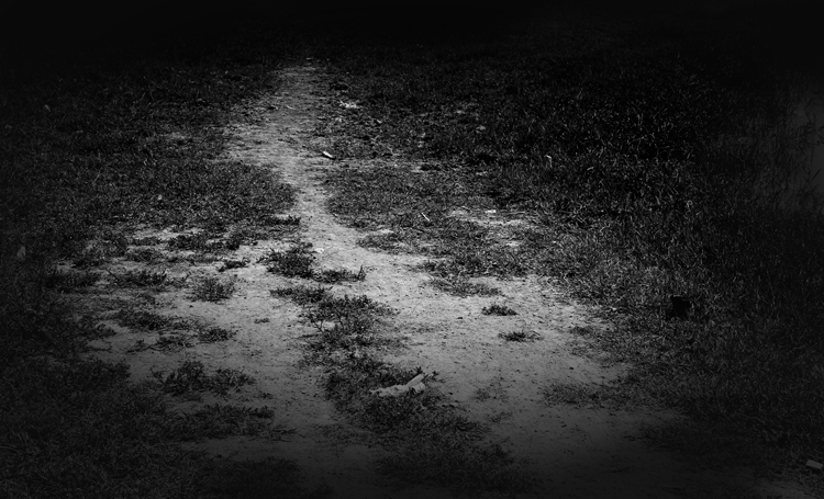 Camino en blanco y negro