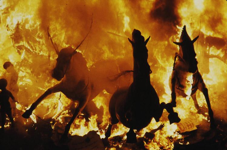 Caballos a través del fuego