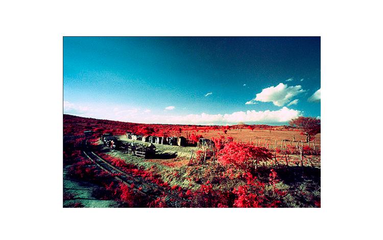 paisaje en rojo