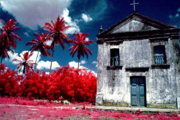 Casa con flores rojas