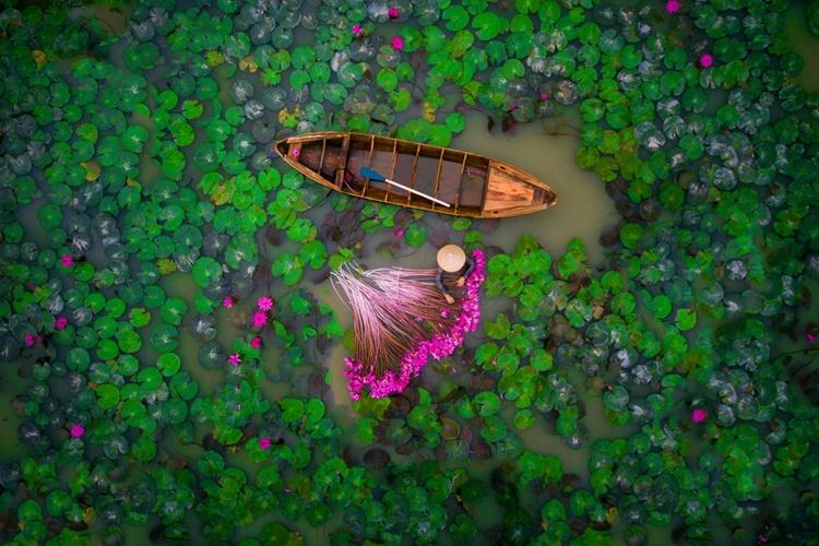 Segundo premio a 'Water Lilies' en el concurso Dronestagr